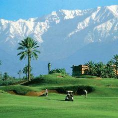 GOLF BUTLER Golf Amelkis