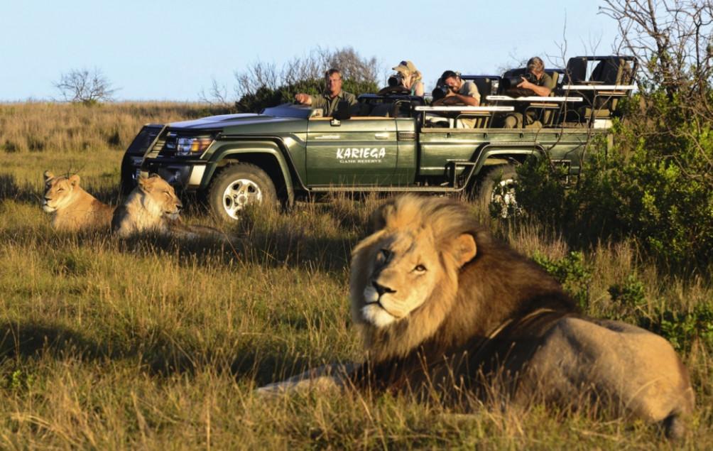 knecht Golf und Safari Südafrika