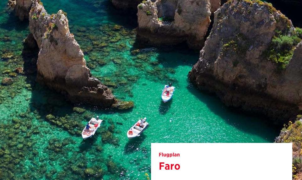 Edelweiss Faro